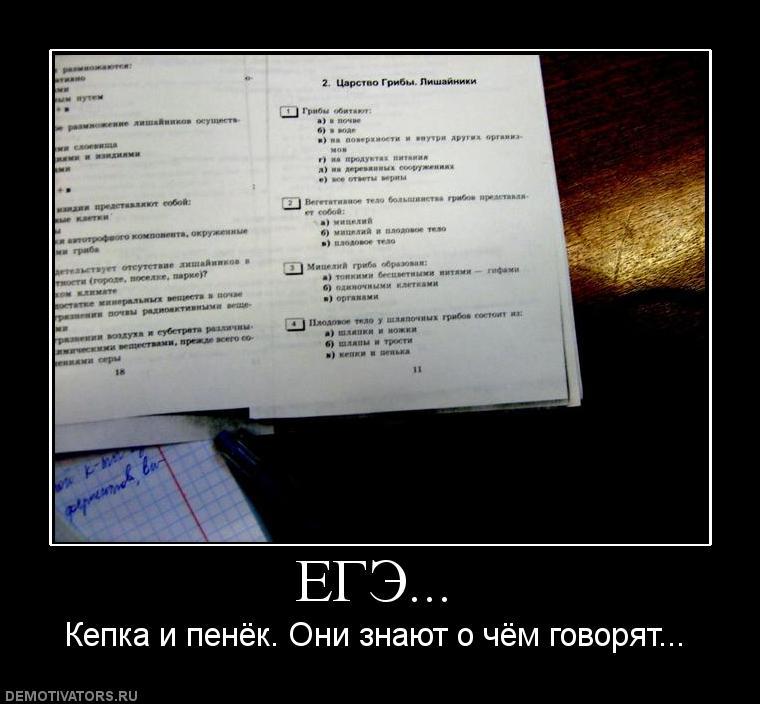 Для устройства простейшего гдз 5 класс русский язык ответы знают, что по-английски
